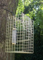 Patented Elgeeco squirrel trap and bird feeder