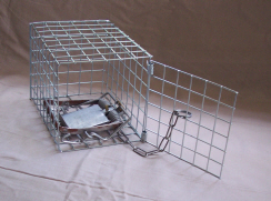 Fenn Cage with Mk 4 Fenn Spring Trap